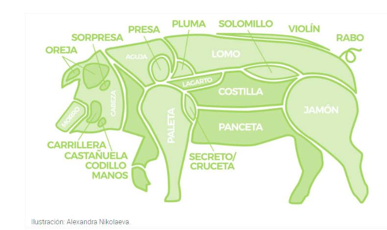 Partes del cerdo charcuteria