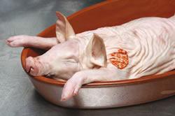 cerdo al horno