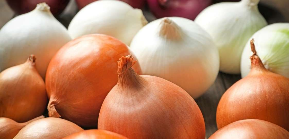 descubre las propiedades de la cebolla