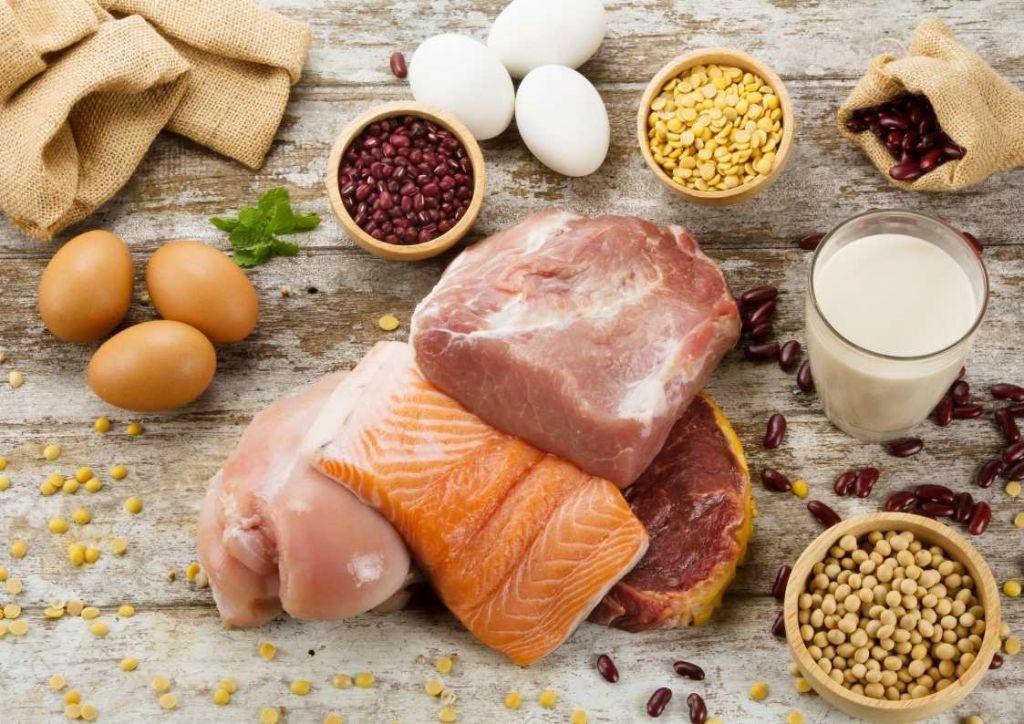 alimentos ricos en proteínas